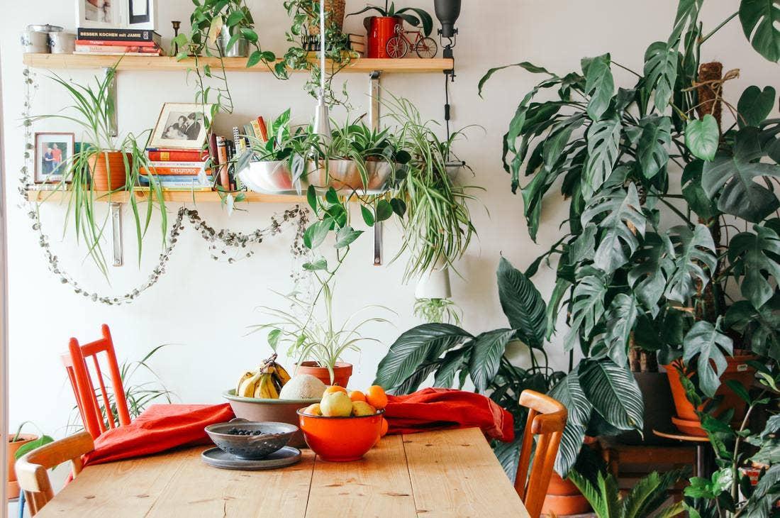 16 Dazzling Bohemian Kitchen Ideas With Photos